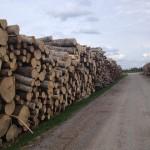учет древесины